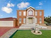 110 The Kraal Drive, Blair Athol, NSW 2560