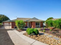 1 Larch Place, Forest Hill, NSW 2651