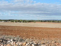 Lot 7, 3 FRENCH ROAD, Quorn, SA 5433
