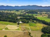 Lot 2, 150 Hydes Creek Road, Bellingen, NSW 2454