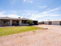 41 Blight Road, Nelshaby, SA 5540