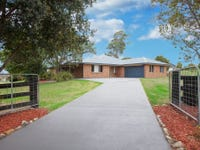 13 Reflection Drive, Louth Park, NSW 2320
