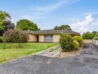 53 Williams Road, Millicent, SA 5280