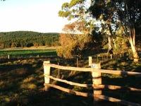867 Campbells River Road, Black Springs, NSW 2787