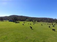 484 Pigman Rd, Dyraaba, NSW 2470