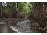 142 Littleback Creek Road, Marlee, NSW 2429