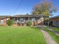 12 Douglas Street, Hobartville, NSW 2753
