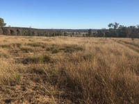 Lot 113 Turill Bus Route Road, Turill, NSW 2850