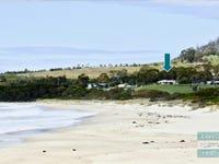 5 Lyne Court, Four Mile Creek, Tas 7215