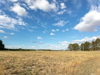 Lot 9 - 60 Eucalyptus Close, Forest Reefs, NSW 2798