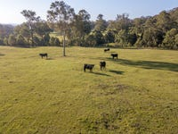92 Punchs Road, Clarence Town, NSW 2321