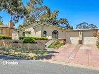 17 Waitara Road, Banksia Park, SA 5091