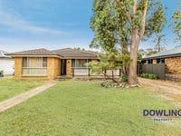 36 TEA TREE DRIVE, Medowie, NSW 2318