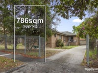 19 Halley Avenue, Camberwell, Vic 3124