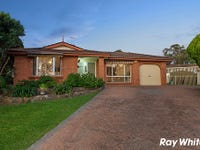 11 Carly Place, Quakers Hill, NSW 2763