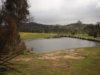 6539 Holbrook Road, Gelston Park, NSW 2650