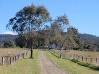 16401 Clarence Way, Bean Creek, NSW 2469