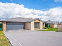 41 Henry Dangar Drive, Muswellbrook, NSW 2333