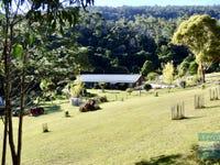 309 Gardiners Creek Road, St Marys, Tas 7215