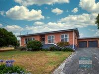 11 Iliad Grove, St Helens, Tas 7216