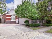 491 Fitzgerald Street, North Perth, WA 6006