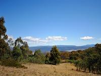 PID 5818207 Braslins Road, Black Hills, Tas 7140