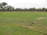 375 Tuppiari Rd, Jacks Creek, NSW 2390