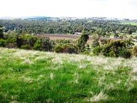 Lot 51 & 53 Hughes Park Road, Sevenhill, SA 5453
