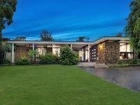 6 Elberta Avenue, Castle Hill, NSW 2154