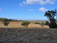 705 Springfield Lane & Castlereagh Hwy, Gulgong, NSW 2852