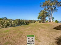 Lot 32 Coastal View Drive, Tallwoods Village, NSW 2430