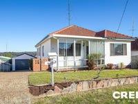 35 Summit Street, North Lambton, NSW 2299