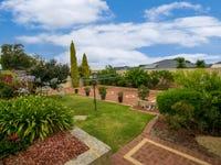 9 Tree Court, Banksia Grove, WA 6031