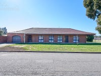 58 Vincent Road, Lake Albert, NSW 2650