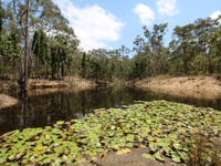 Lot 3 Broke Road, Pokolbin, NSW 2320