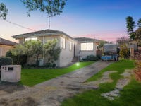 49 Laelana Avenue, Budgewoi, NSW 2262