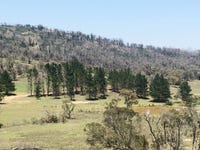 Lot 1 Mount Fairy Road, Mount Fairy, NSW 2580