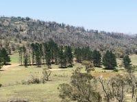 Lot 1 Mount Fairy Road, Mount Fairy, NSW 2580