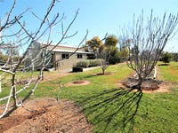 276 Pattersons Lane, Young, NSW 2594