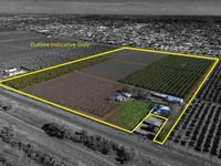 217 Rankins Springs Road, Griffith, NSW 2680