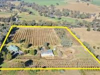 219 Pattersons Lane, Young, NSW 2594