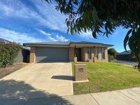 19 Wellington Drive, Thurgoona, NSW 2640