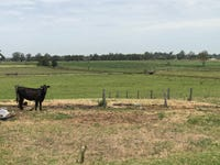 Lot 4, 35 Ralstons Road, Nelsons Plains, NSW 2324