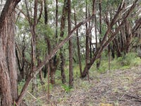 49 Boronia Road, Bullaburra, NSW 2784