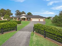 22 Reflection Drive, Louth Park, NSW 2320