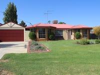 38 Nixon Street, Euston, NSW 2737