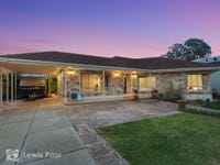 3 Perry Avenue, Marion, SA 5043