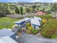 175 Johnstons Road, Hillwood, Tas 7252
