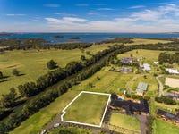 17 Trackside Drive, Kanahooka, NSW 2530