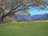 235 Limpinwood Valley Road, Limpinwood, NSW 2484